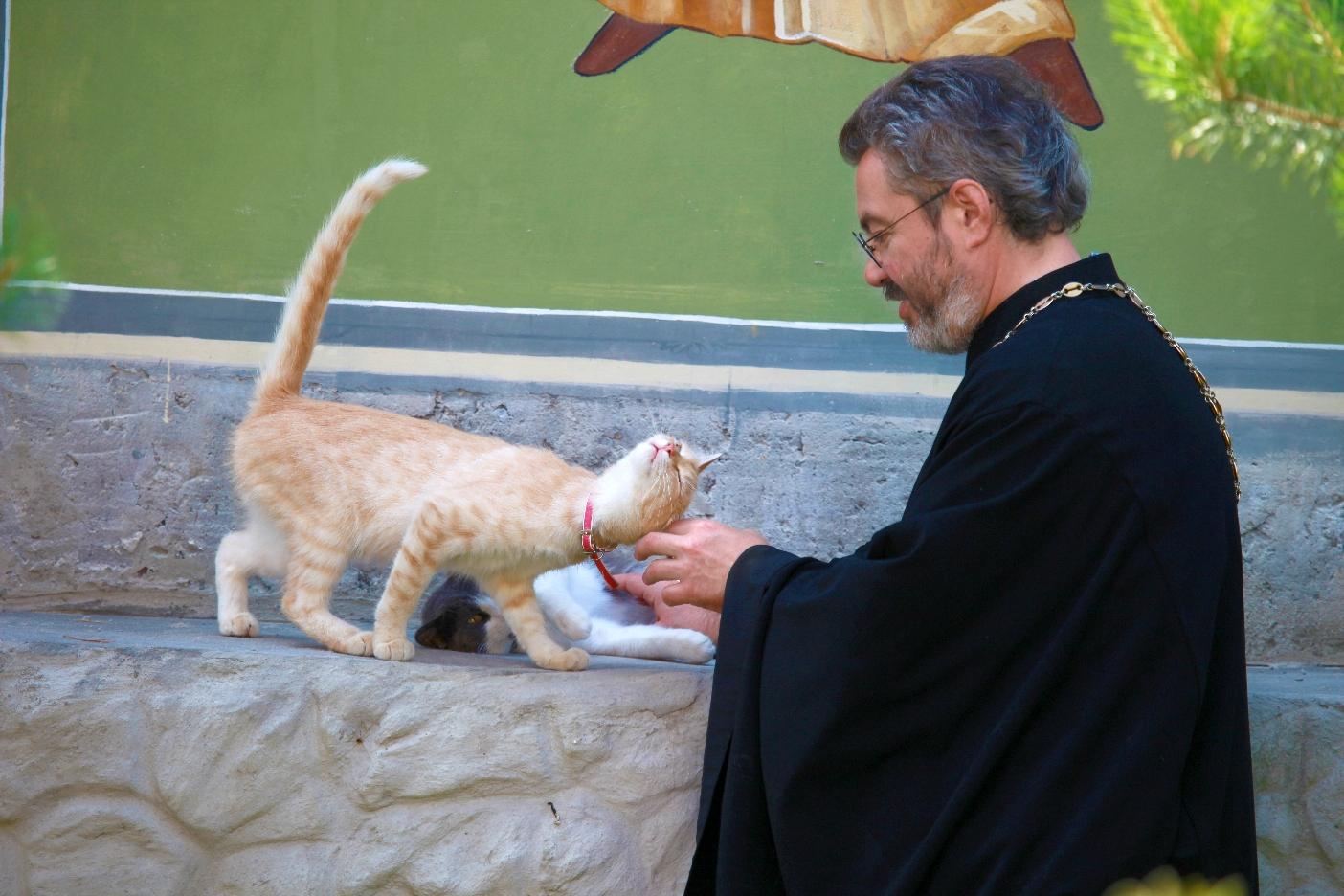 Оттенки доброты: молебен о бездомных животных Img_0623